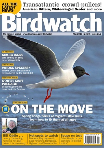 Birdwatch May 2018